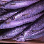 【さんまご飯】レシピ・作り方をチェック 大原千鶴のもっと気軽に魚介レシピ「さんまご飯・さんまのみそ汁」 2017年9月21日放送